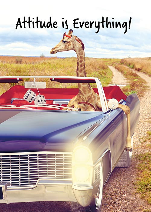 Funny Giraffe Birthday Card for him