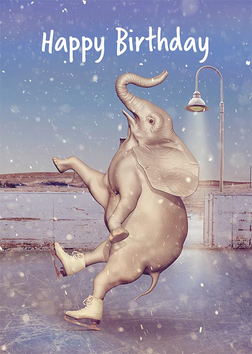 Funny Elephant Birthday Card