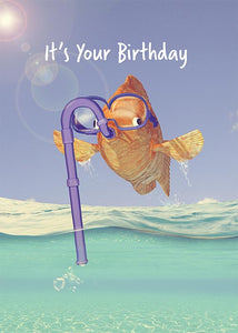 Funny Fish Birthday Card