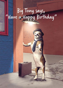 Funny Dog Birthday Card