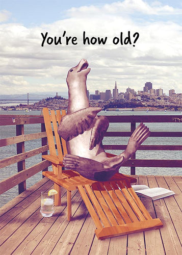 Funny Seal Birthday Card
