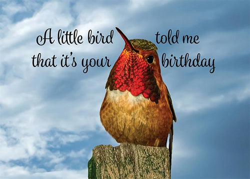 You're So Fly Hummingbird Birthday Card