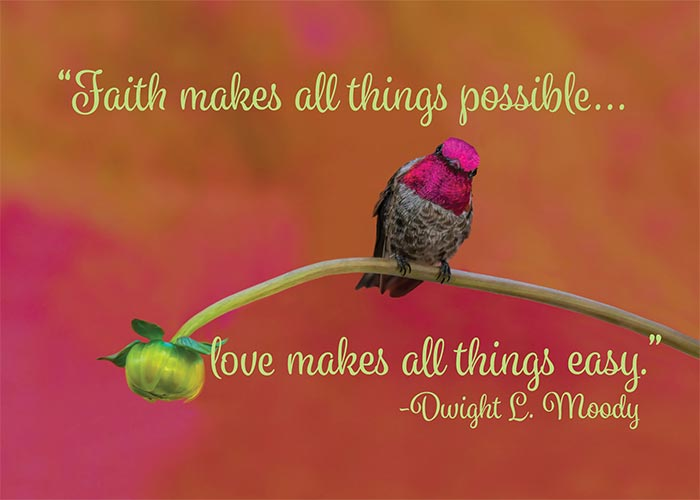 Faith makes all things possible Hummingbird Birthday Card