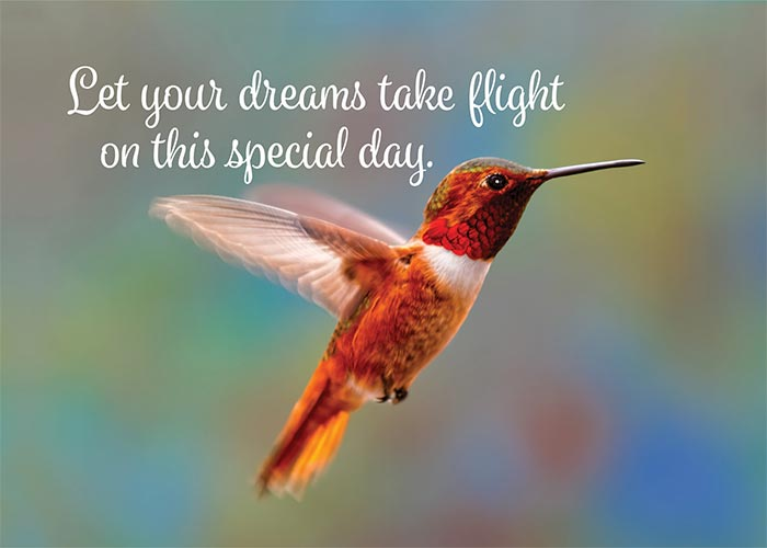 Let Your Dreams Take Flight Hummingbird Birthday Card