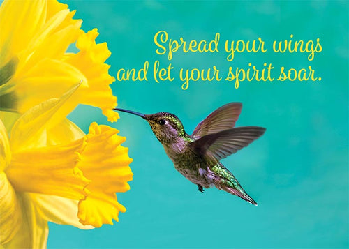 Spread Your Wings Hummingbird Birthday Card