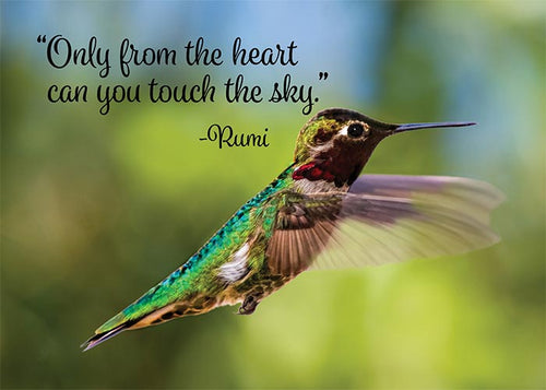 Touch the Sky Hummingbird Birthday Card