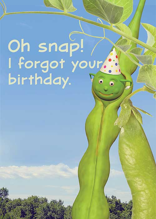 Oh Snap! I Forgot Your Birthday! Belated Birthday Card