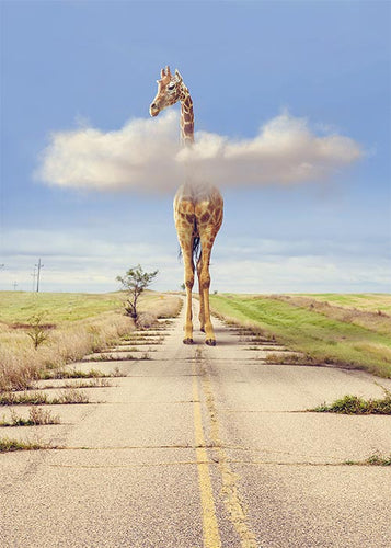Funny Giraffe Walking Blank Card