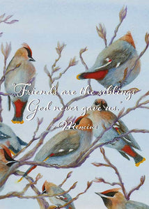 Friends are the Siblings... Bird Friendship Card