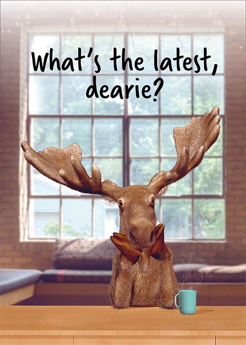 What's the Latest? Funny Moose Friendship Card