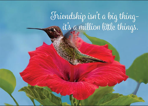 Friendship isn't a Big Thing... Hummingbird Friendship Card