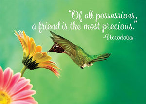 I Treasure Your Friendship Hummingbird Friendship Card