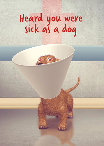 Funny Sick as a Dog Get Well Card