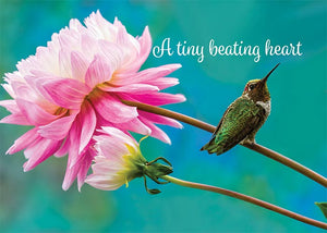A Tiny Beating Heart Hummingbird Newborn Card