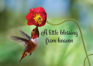 A Little Blessing Hummingbird Newborn Greeting Card