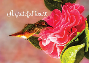 A Grateful Heart Hummingbird Thank You Greeting Card