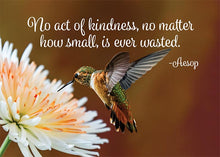 No Act of Kindness is Wasted Hummingbird Thank You Card