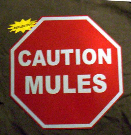 Magnet - Small Caution Mules Magnet