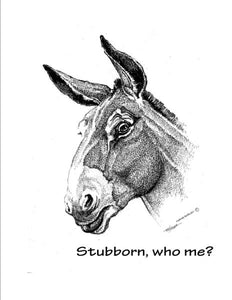 "Special Order - T-Shirt - ""Stubborn"""