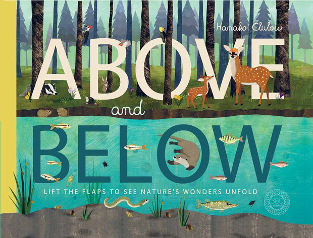 Above and Below - Makers On Mount