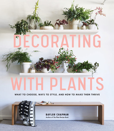 Decorating With Plants - Makers On Mount