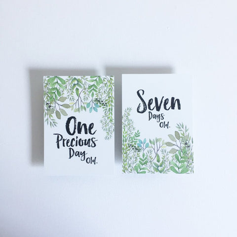 SPARE TIME CO - Milestone Cards, The Nature Collection