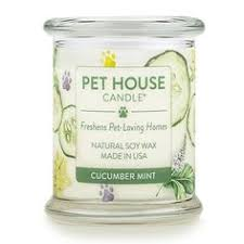 Pet House Candle - Cucumber Mint