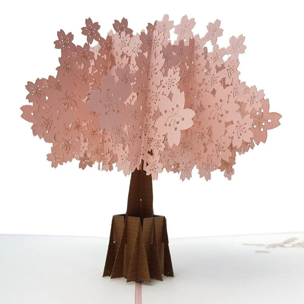 Cherry Blossom (Pink Cover) 3D Pop Up Greeting Card 2