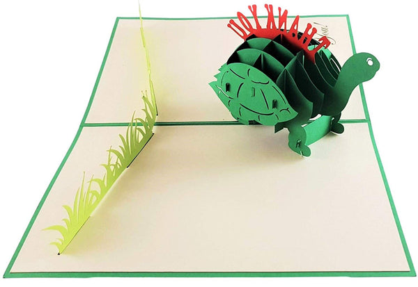 Cute Turtle Thank You 3D Pop Up Greeting Card 3