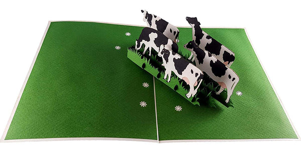 Dairy Cows 3D Pop Up Greeting Card 4
