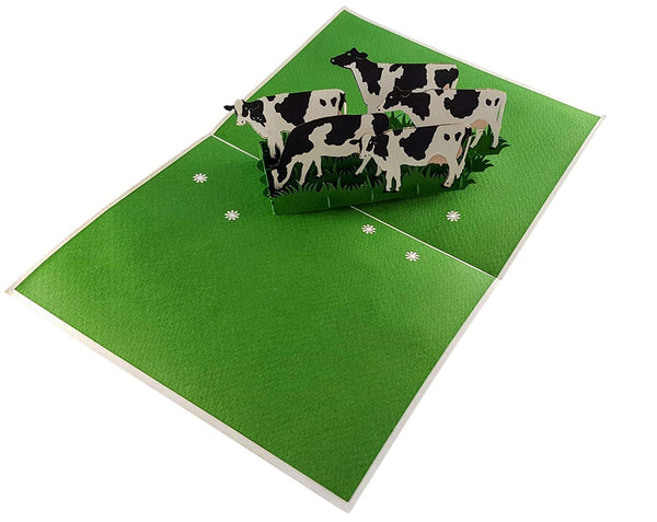 Dairy Cows 3D Pop Up Greeting Card 2