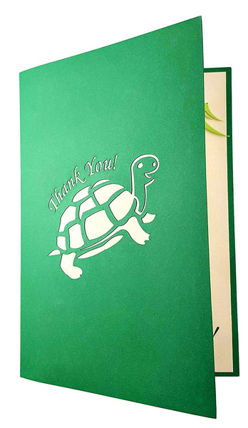 Cute Turtle Thank You 3D Pop Up Greeting Card 6