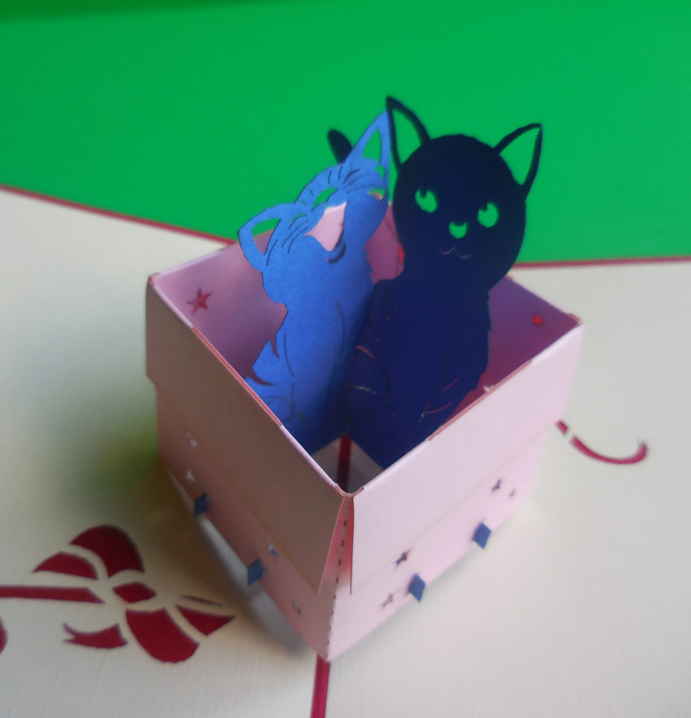 Cats in Box 3D Pop Up Greeting Card 1