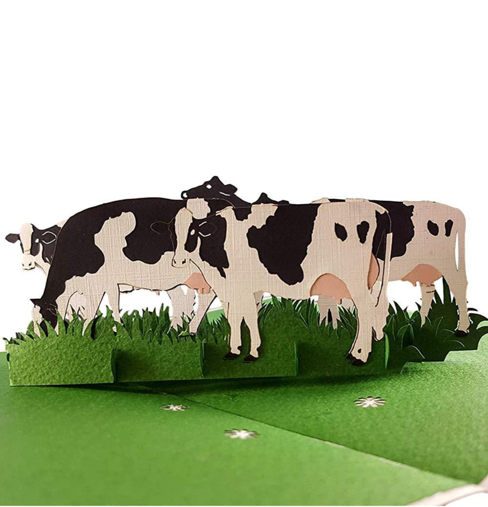 Dairy Cows 3D Pop Up Greeting Card 1 front