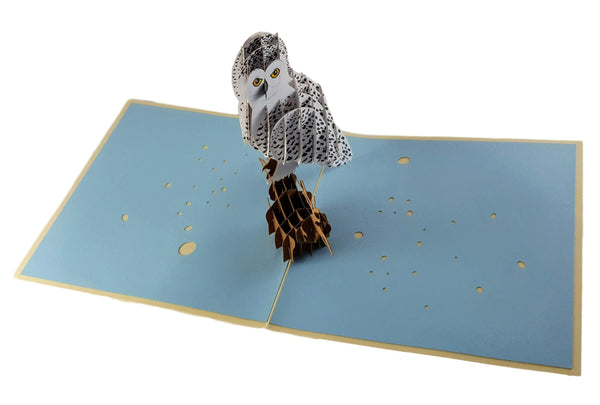 Owl 3D Pop Up Greeting Card 2