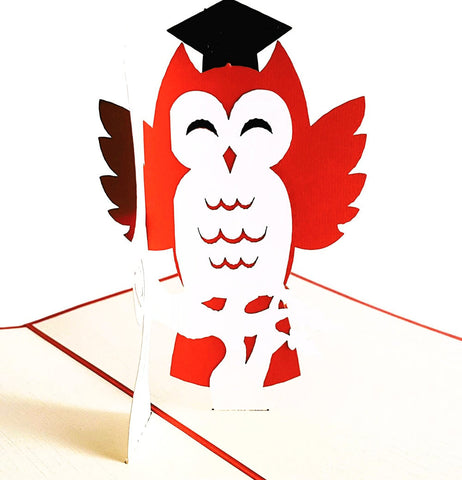Graduation Owl 3D Pop Up Greeting Card 1