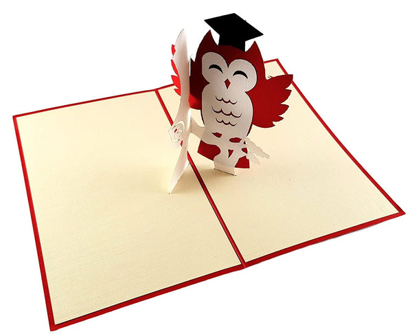 Graduation Owl 3D Pop Up Greeting Card 2