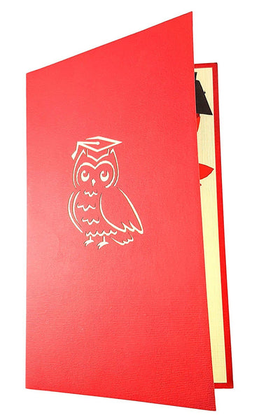 Graduation Owl 3D Pop Up Greeting Card 3