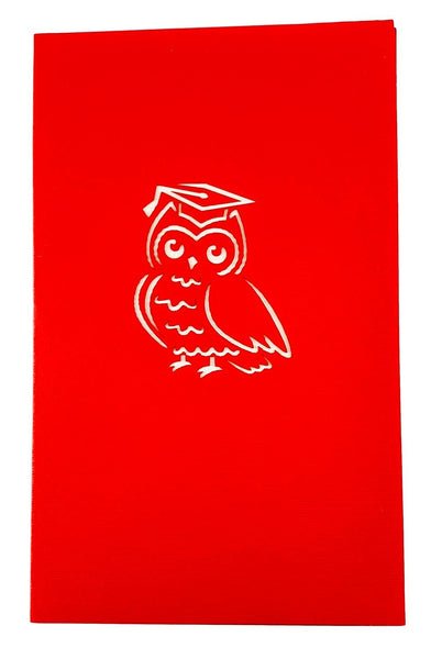 Graduation Owl 3D Pop Up Greeting Card 4