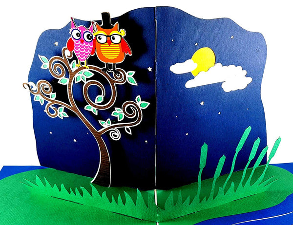Night Owls 3D Pop Up Greeting Card 3