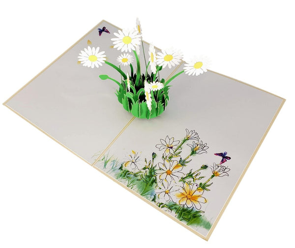 White Daisies 3D Pop Up Greeting Card 2
