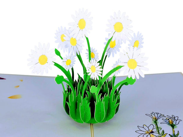 White Daisies 3D Pop Up Greeting Card 3