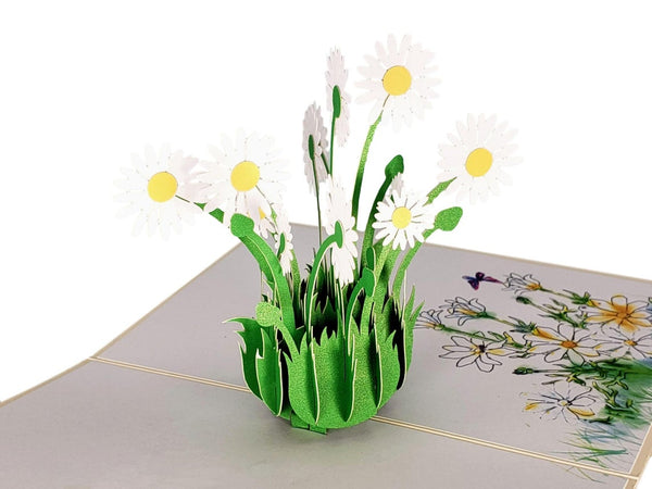 White Daisies 3D Pop Up Greeting Card 6