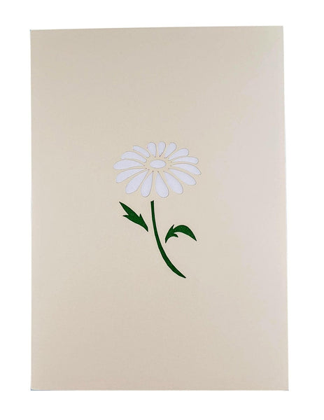 White Daisies 3D Pop Up Greeting Card 8
