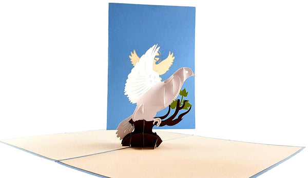 White Dove with Olive Branch 3D Pop Up Greeting Card 2