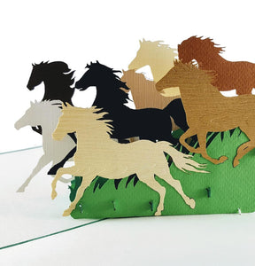 Wild Black Brown Horses II 3D Pop Up Greeting Card 1