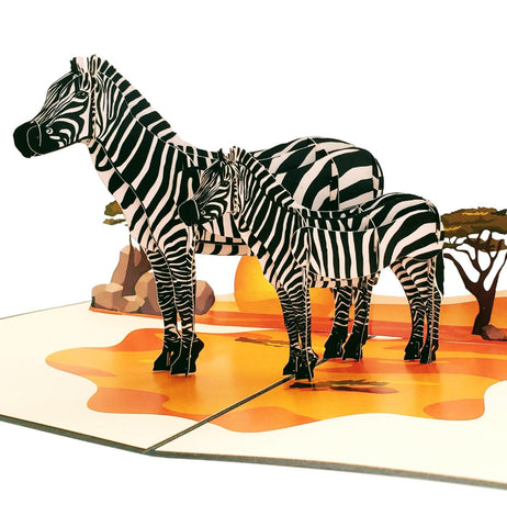 Zebras 3D Pop Up Greeting Card 1 front
