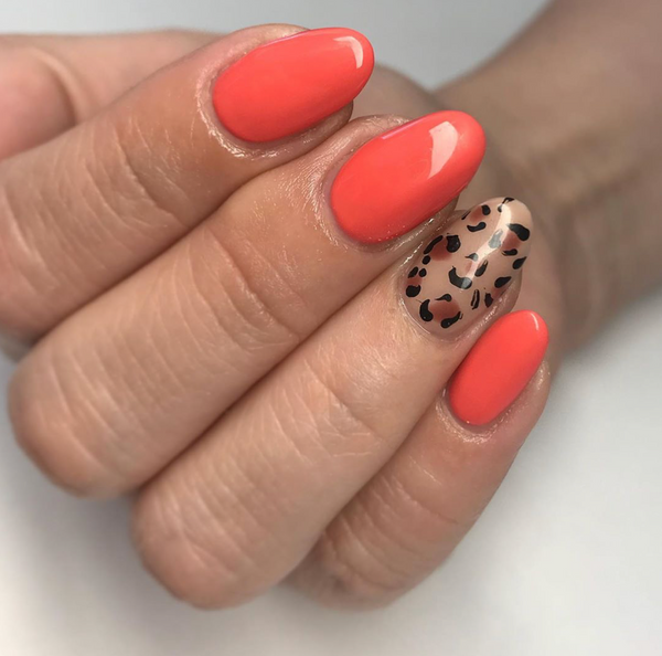 Coral Reef Gel Color