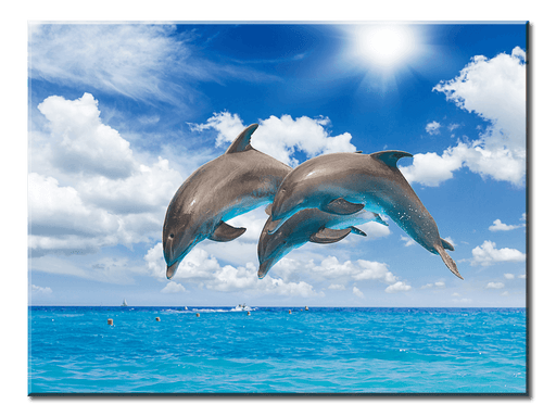Jumping Dolphins - 1 panel XL - AvailableGift.com