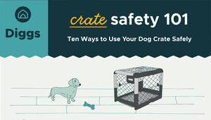 Ten tips to use your dog crate safely.